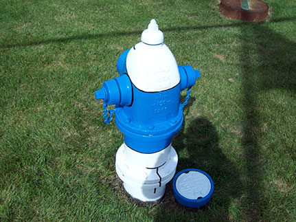 Smurf Hydrant from behind- 1415 S. Ardmore (2)