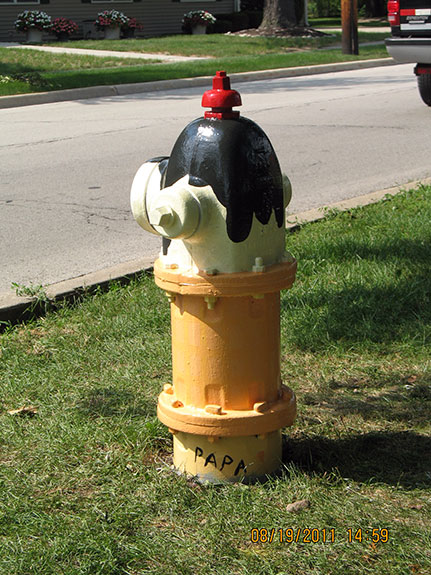 Harvard and Kenilworth Fire Hydrant(2)