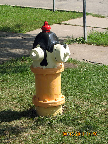 Harvard and Kenilworth Fire Hydrant