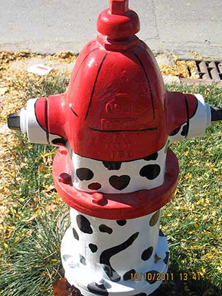 Madison and Summit - Dalmation with Fire Hat (2)